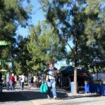 Die Boeremark Langenhovenpark farmers market